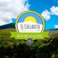 logo El colladito miraflores-de-la-sierra-300x300